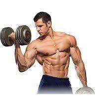 Курс: персональный тренер по бодибилдингу и фитнесу с диетологическим уклоном